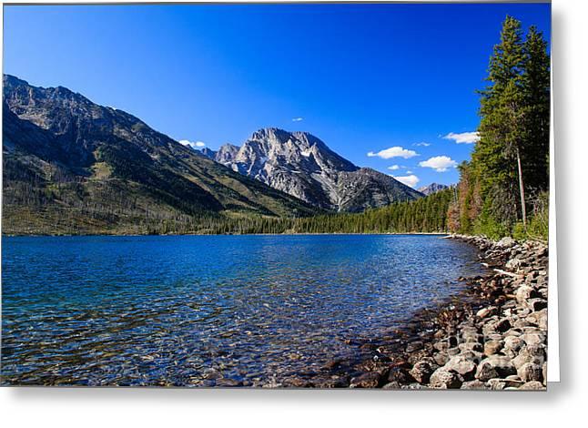 Jenny Lake Greeting Card by Robert Bales