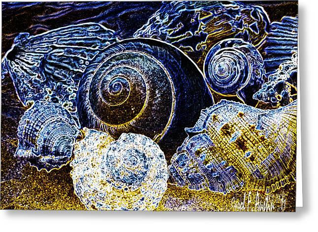 Abstract Seashell Art Greeting Card