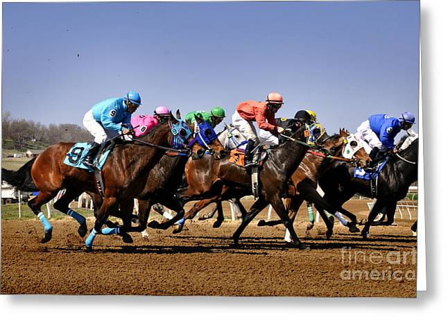 Greeting Card featuring the photograph Jockeying For Position by Nava Thompson