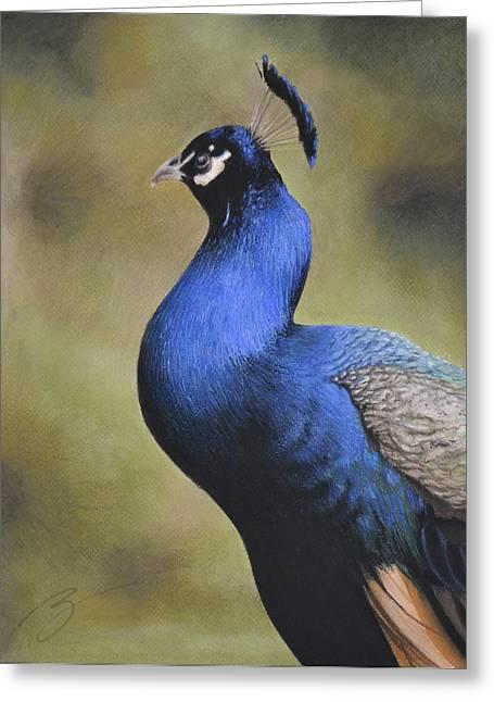 Joe The Peacock Loved Oreo Cookies Greeting Card by Ben Kotyuk