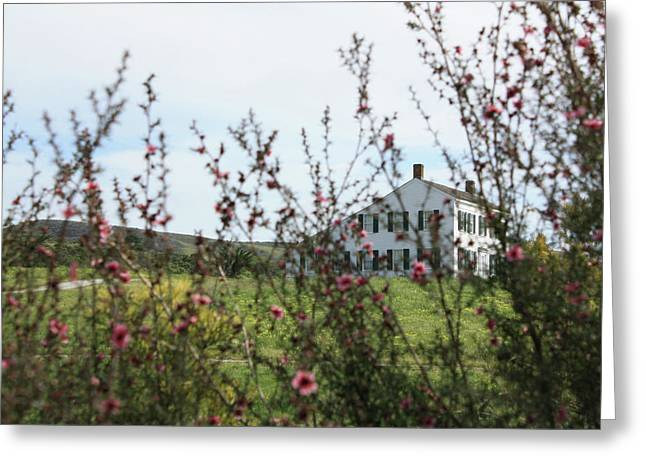 Johnston House In Half Moon Bay Greeting Card