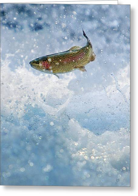 Jumping Trout 1 Greeting Card by Steven Llorca