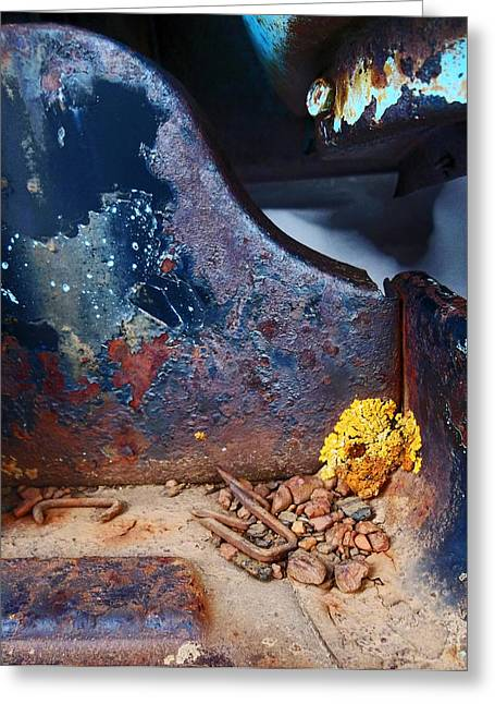 Junkyard Ford Sideboard Greeting Card by Wesley Hahn