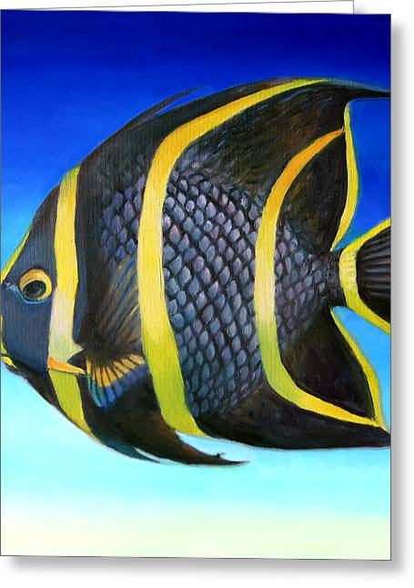 Juvenile French Angelfish Greeting Card by Nancy Tilles