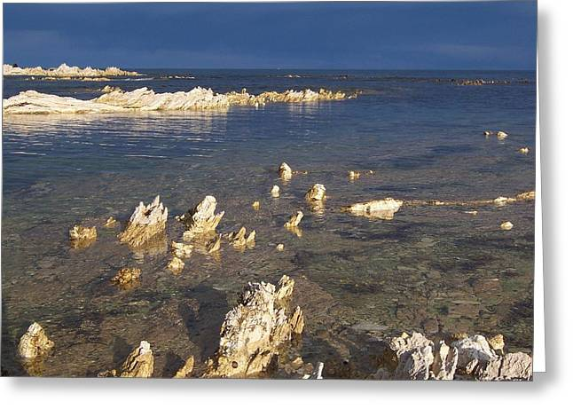 Kaikoura Coast Greeting Card by Peter Mooyman