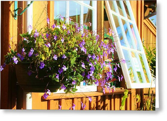 Kathy's Violet Basket Greeting Card
