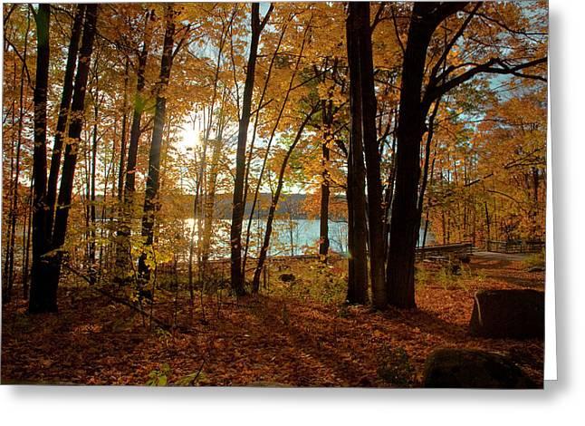 Kattles Lake Series 37 Greeting Card by Pat Vleer
