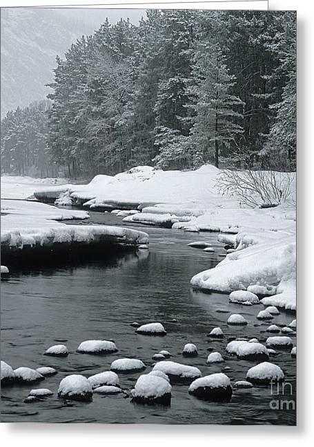 Katun River Greeting Card by Elena Filatova