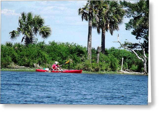 Kayaking Along The Gulf Coast Fl. Greeting Card by Marilyn Holkham