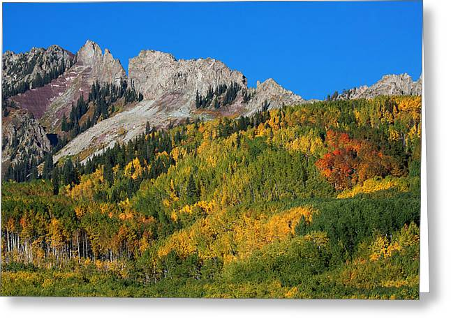 Greeting Card featuring the photograph Kebler Pass by Jim Garrison