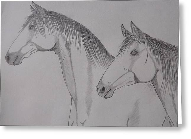 Keiger Mustangs Greeting Card