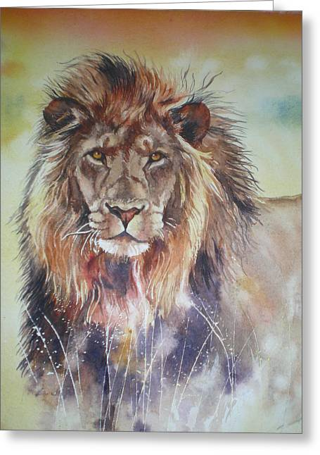 Kenyan Lion Greeting Card by Sandra Phryce-Jones