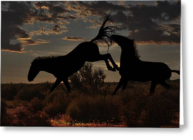 Greeting Card featuring the photograph Kick by Tammy Espino