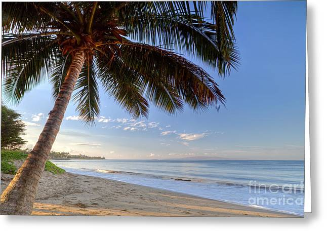 Kihei Maui Hawaii Sunrise Coconut Palm  Greeting Card