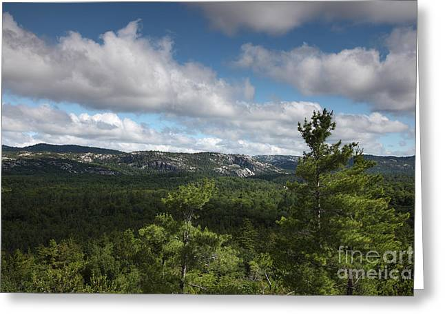 Killarney Provincial Park Greeting Card