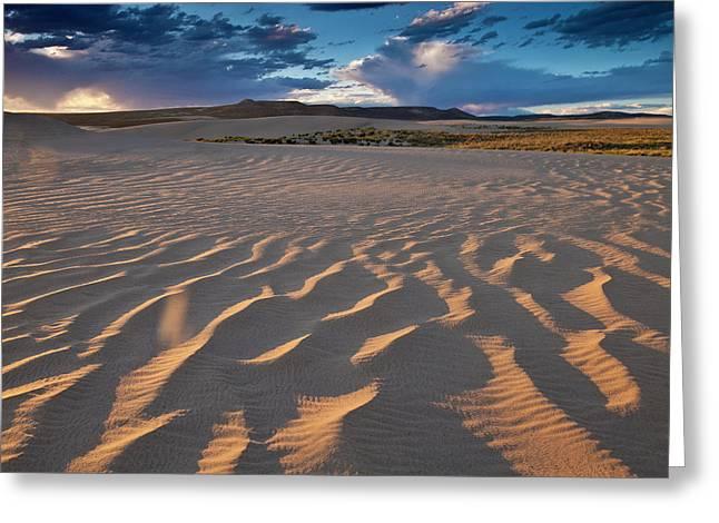 Killpecker Dunes At Sunset Greeting Card