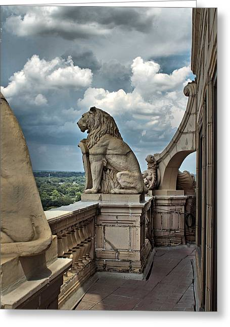 King Of The Beasts In The Land Of The Braves Greeting Card by Farol Tomson