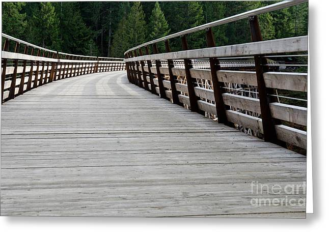Kinsol Walkway Kinsol Trestle Pathway Across The Railroad Bridge Restored Greeting Card by Andy Smy