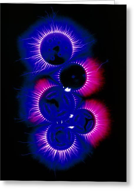 Kirlian Photograph Of Cogs From A Watch Greeting Card by Garion Hutchings