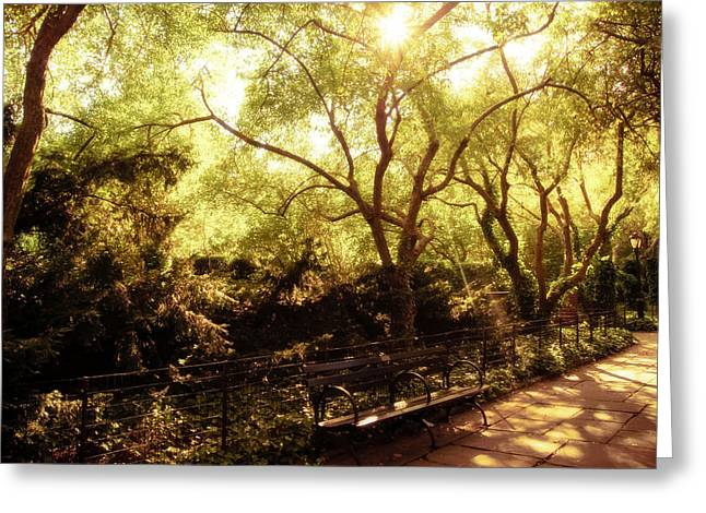 Kissed By The Sun - Central Park - New York City Greeting Card