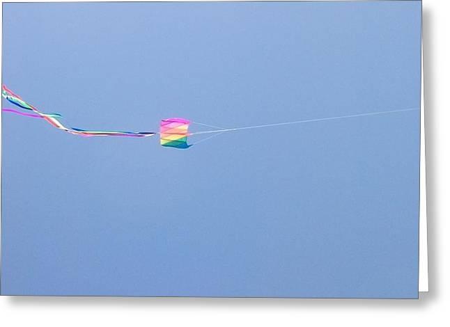 Kites 8 Greeting Card by Elizabeth  Sullivan