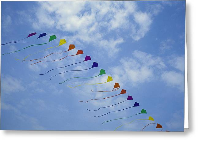 Kites Fly In A Rainbow Of Colors Greeting Card by Stephen Alvarez