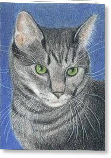 Kitty Cat - Aceo Greeting Card
