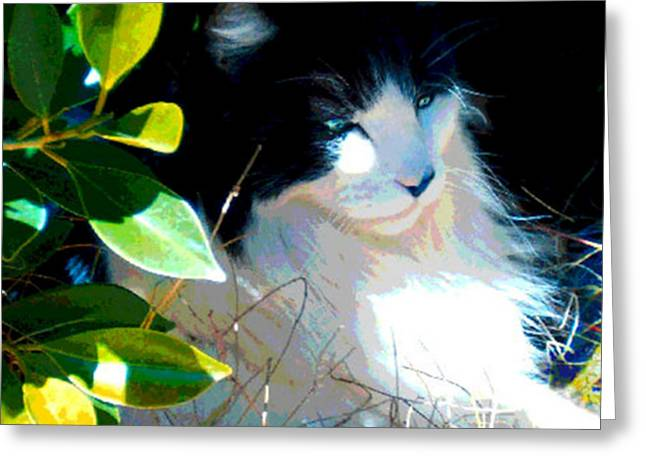 Greeting Card featuring the painting Kitty Hideaway by Elinor Mavor