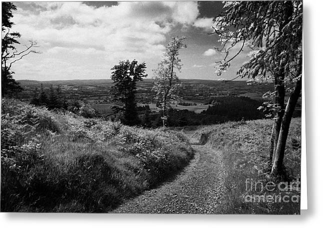 Knockmany Hill Clougher Valley County Tyrone Northern Ireland Greeting Card by Joe Fox