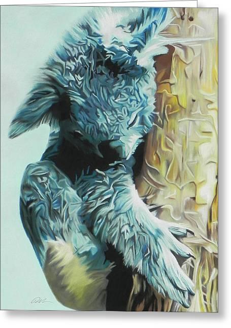 Koala Greeting Card by Paul Miners