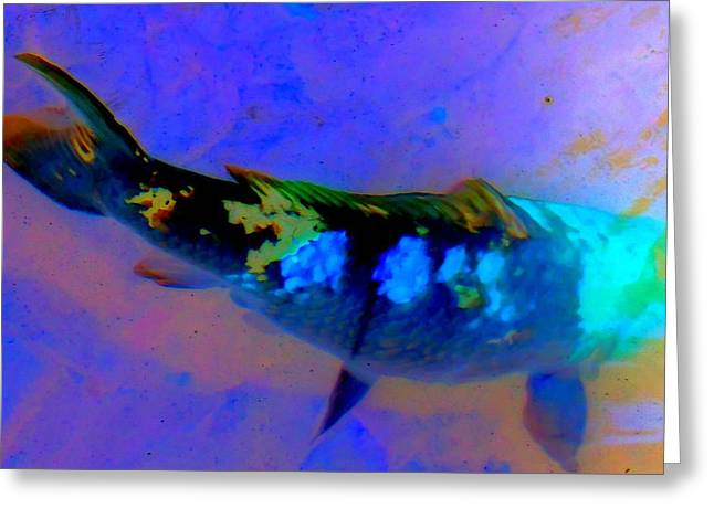 Koi Story One A Greeting Card by Randall Weidner