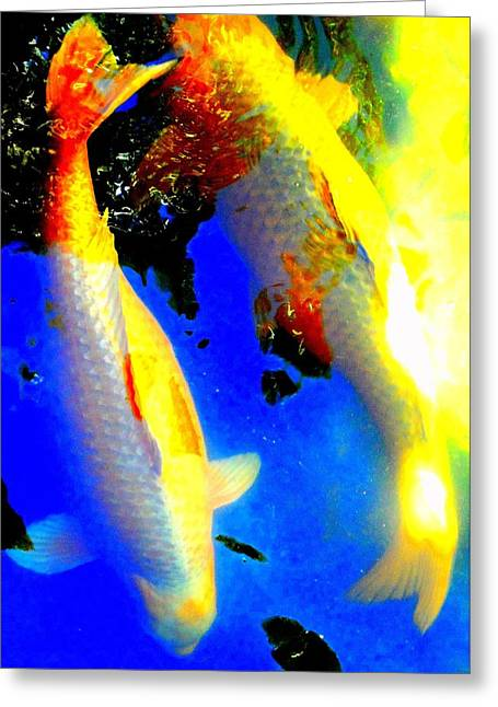 Koi Story Two A Greeting Card by Randall Weidner