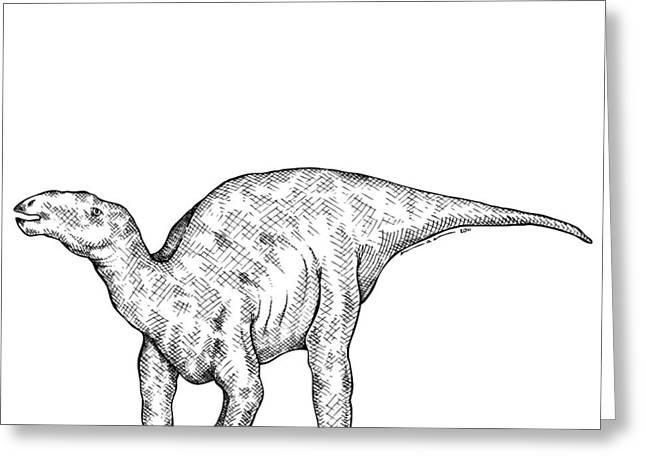 Kritosaurus - Dinosaur Greeting Card