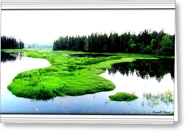 Lac Williams Quebec  Greeting Card by Danielle  Parent