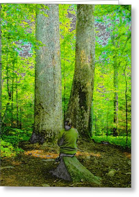 Lady In The Woods Greeting Card by David Lee Thompson
