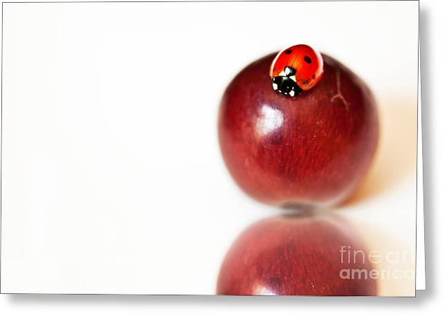 Ladybug On Grape Greeting Card by Artist and Photographer Laura Wrede