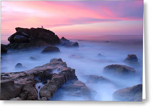 Laguna Beach Sunrise Greeting Card