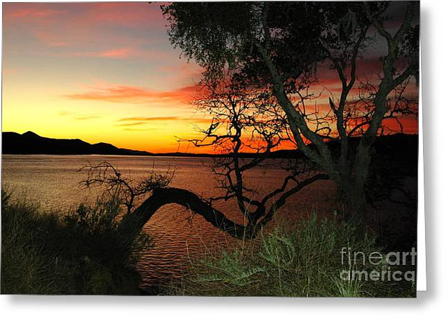 Greeting Card featuring the photograph Lake Cachuma Evening by Johanne Peale