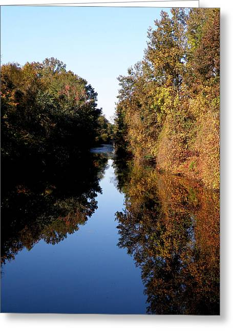 Lake Drummond Canal Greeting Card by Feva  Fotos