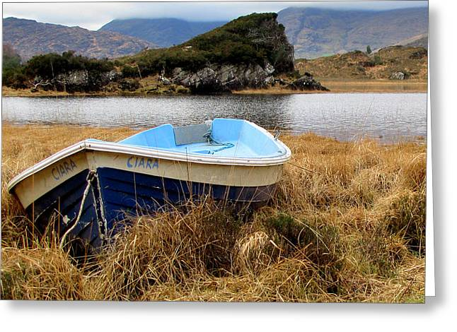 Greeting Card featuring the photograph Lake In Killarney National Park by Barbara Walsh