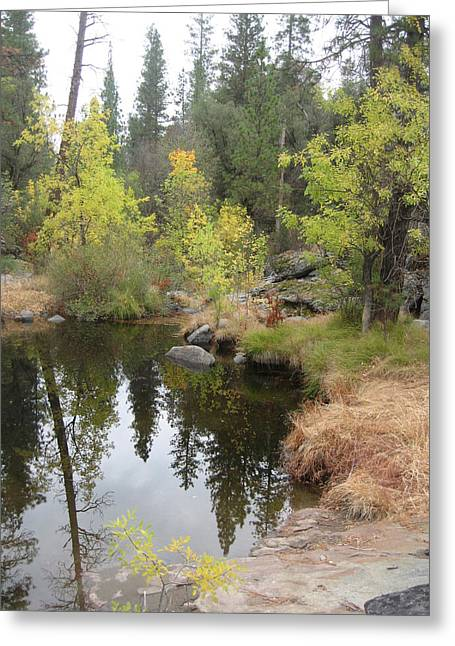 Lake In Sierras Greeting Card by Naxart Studio