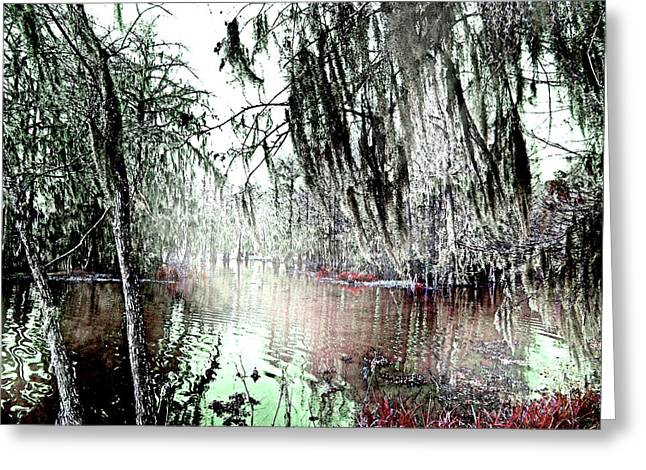 Greeting Card featuring the photograph Lake Martin Swamp by Lizi Beard-Ward