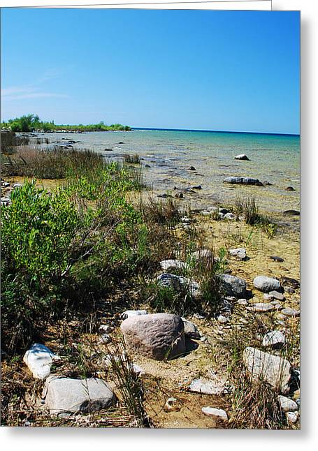 Greeting Card featuring the photograph Lake Michigan Shoreline On A Sunny Afternoon by Janice Adomeit