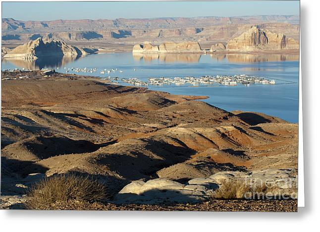 Lake Powell Evening Greeting Card by Sandra Bronstein