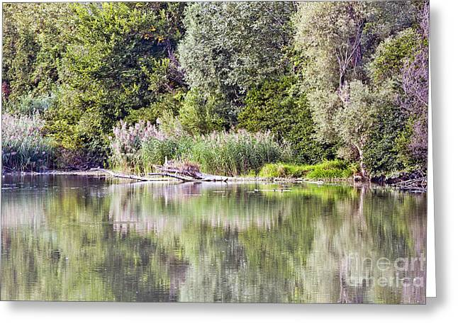 Lake Reflections Greeting Card by Odon Czintos