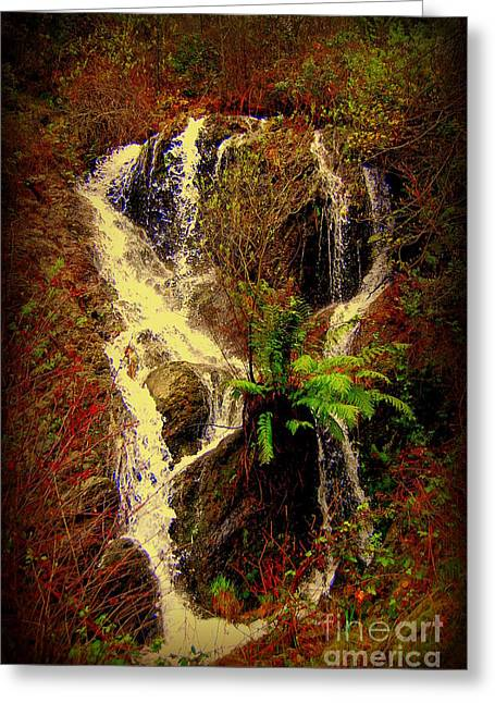Lake Shasta Waterfall 3 Greeting Card by Garnett  Jaeger