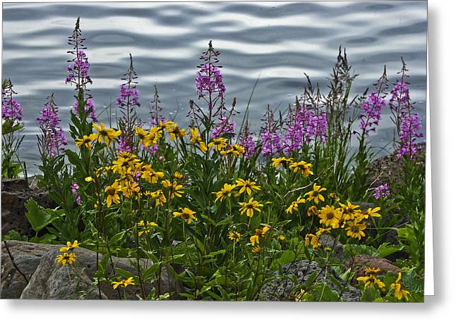 Lakeside Beauties Greeting Card