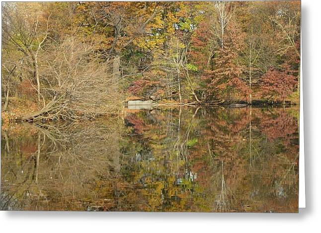 Greeting Card featuring the photograph Lakeside Reflections by Sarah McKoy