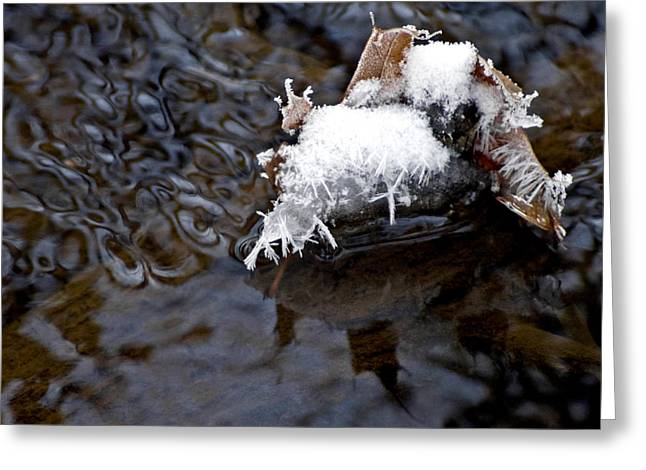 Laminar Creek Waters And Feather Ice Greeting Card