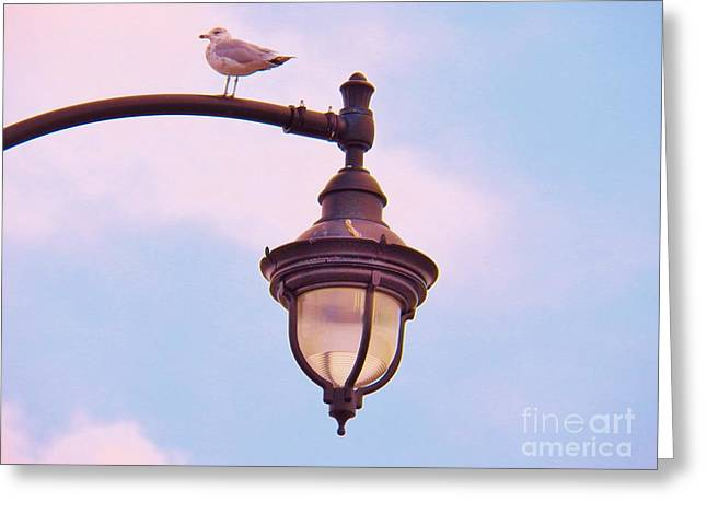 Lampost Gull   Two Greeting Card by Judy Via-Wolff